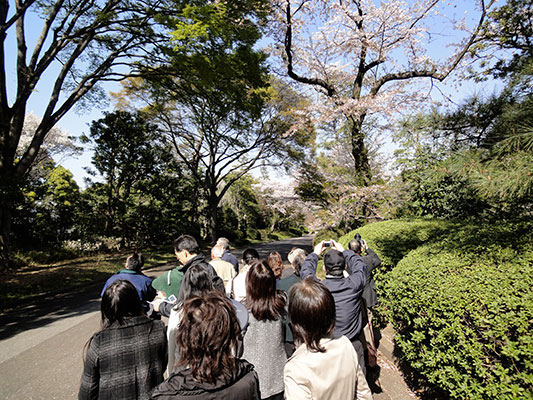 inside the Imperial Palace grounds