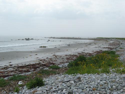 NS Beach